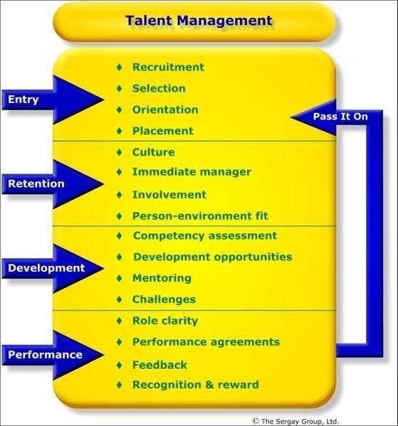 تفاوتهای مدیریت استعداد و مدیریت منابع انسانی