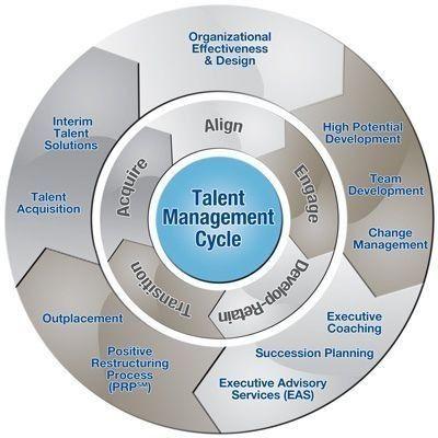 چرخه مدیریت استعدادها