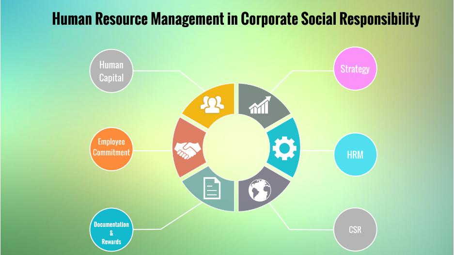 مدیریت منابع انسانی اجتماعی