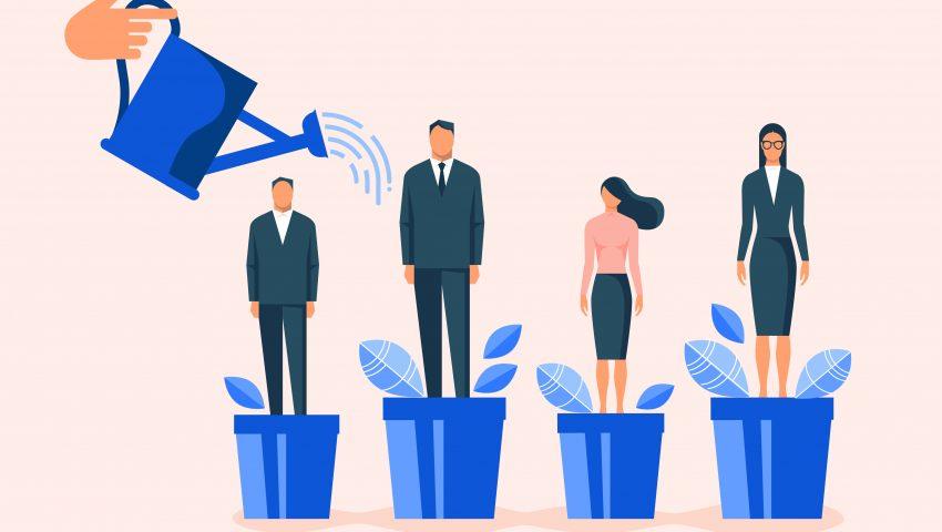 استراتژی های اشتباه مدیریت منابع انسانی ؛ کارمند سازی برای رقبا یا توسعه سازمانی؟[نوید طمبوشی ]