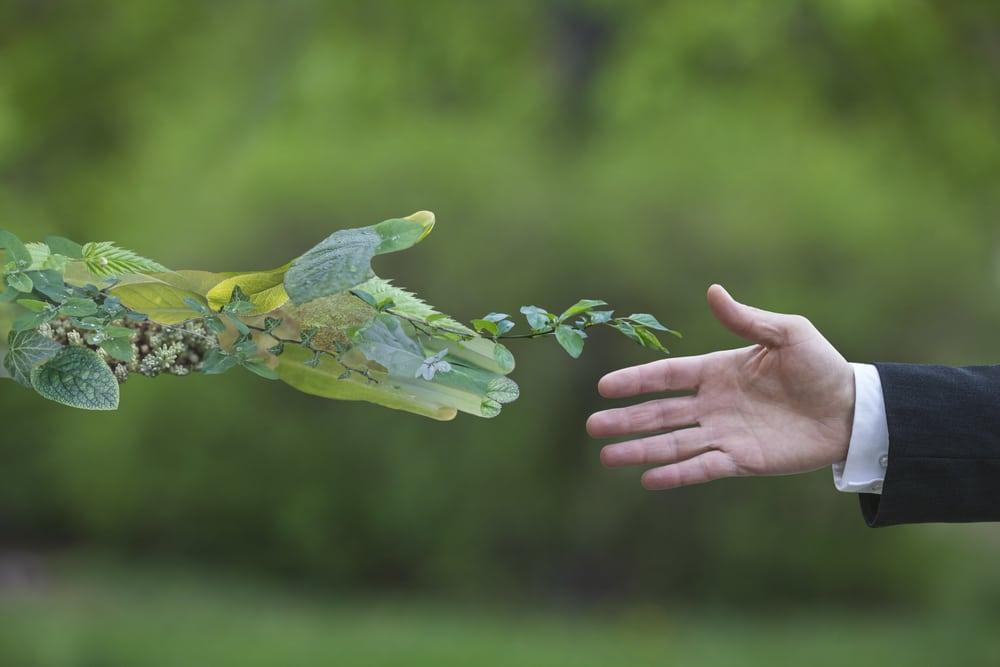 حفظ طبیعت